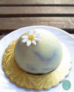 dessert-mousse-au-chocolat-bo-gato-anne-nashed