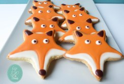 cookie-fuchs-anne-nashed